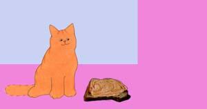 Dikkie Dik krijgt een boterham. Met pindakaas. Niet met pasta.