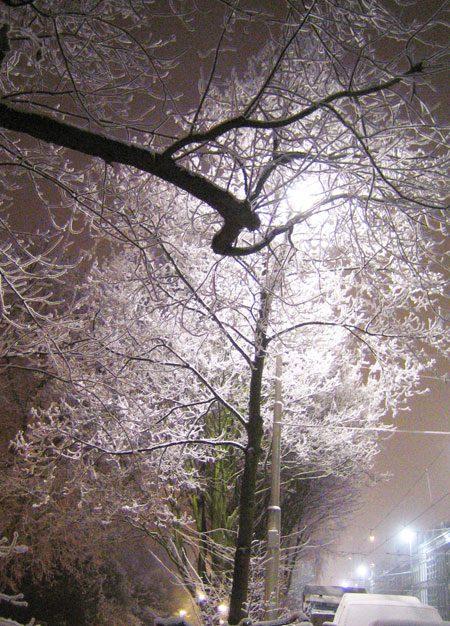 Sneeuw in Rotterdam, december 2007