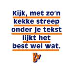 "VVD poster: ""Met zo'n kekke streep onder je tekst lijkt het best wel wat"""