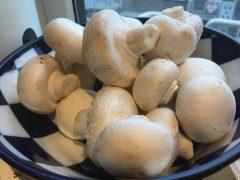 Schaal met champignons